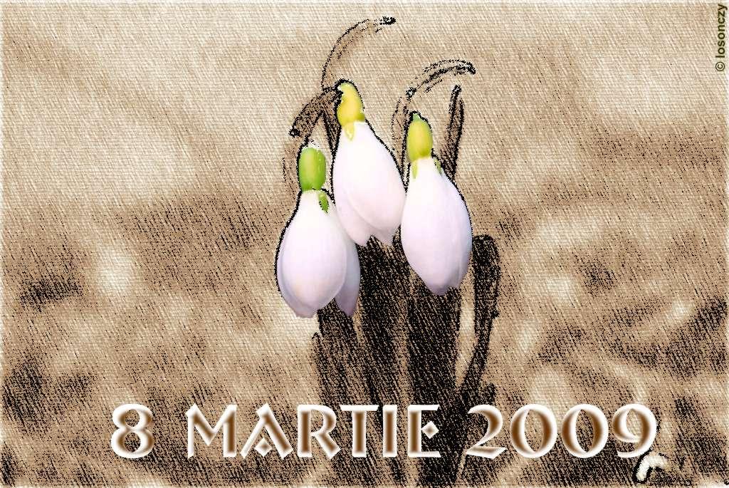 8martie2009a1