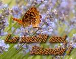 La mulți ani, Bianca Roman!
