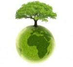 Ecologia în viaţa ta